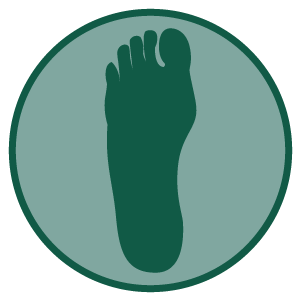 SIMED | Foot and Ankle Center