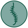 SIMED | Spine & Neurosurgery